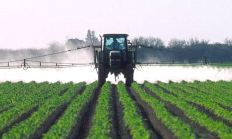 sprayed fields