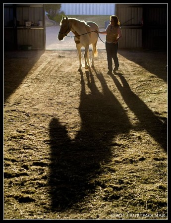 Feel and Release Equestrian Clinic at Rancharrah in Reno, Leslie Desmond Offers her Gift