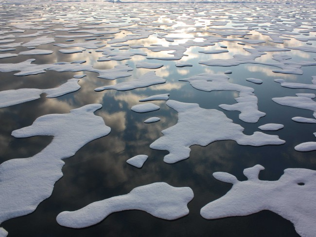 Melting Arctic Sea ice
