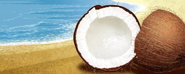 Coconut1-2