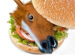 horse meat satire, funny