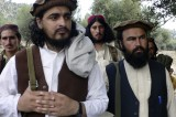 Pakistan Taliban Peace Talks Just Contract Negotiations