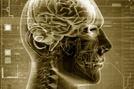 Omega 3 and healthy brains