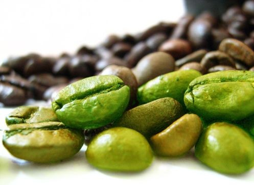 Green Coffee Bean Extract Work in Losing Weight?