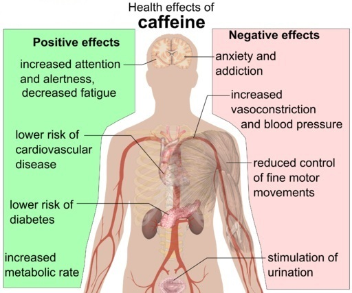 Coffee Drinking Negative & Positive Effects