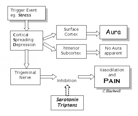 Migraine Symptoms Mechanism