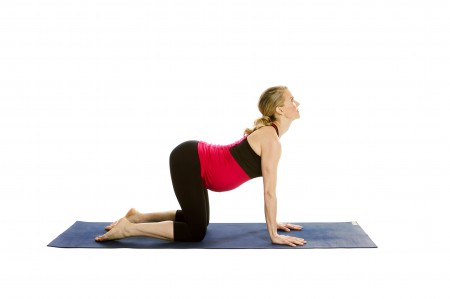 Prenatal-Cow-Pose