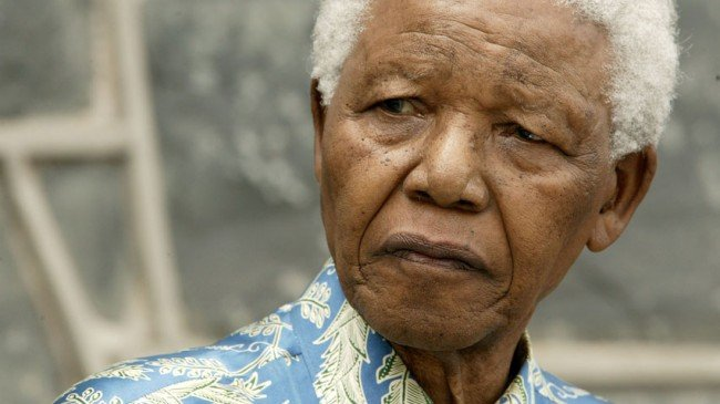 Nelson Mandela the Heifer and Connecting Number 11 Remains a Mystery