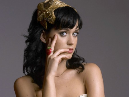 Katy Perry Announces Lib Dub Contest Winner