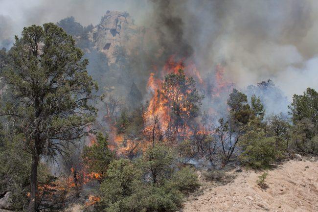 Yosemite Helpless and Under the Thumb of the Raging Rim FireRi