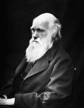 Charles Darwin theorized evolution