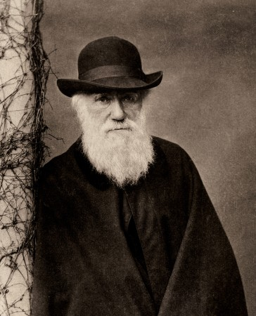 Charles Darwin was unsure of the Cambrian Explosion