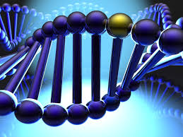 DNA Creates Glue That Builds by Itself