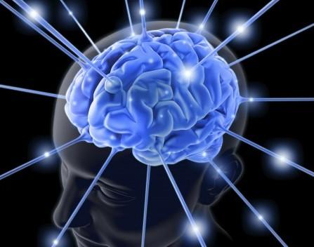 Savant brain