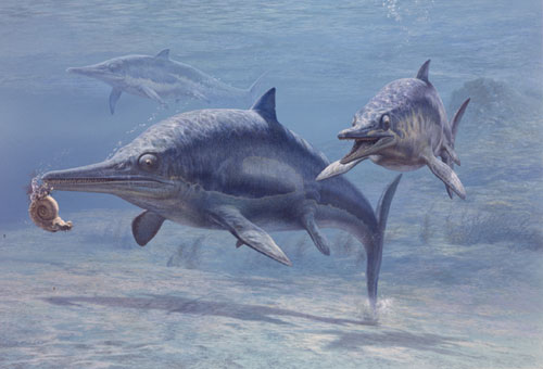 ichthyosaurs, dolphins and sharks