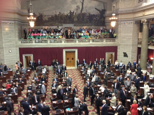 Attempt to Override Gun Bill Veto Fails