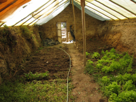 Grow food year round underground