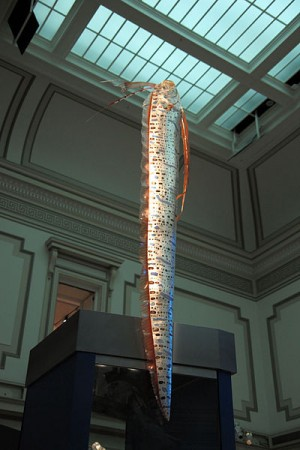 Giant oarfish model