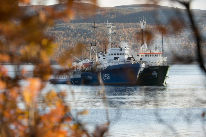 Russia's War over Greenpeace Activists, Drugs and Cheese