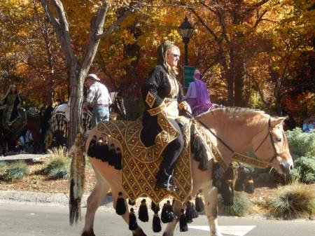Parading Arabians