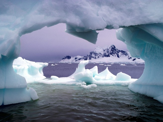 Gene shuffling takes place in microbes of Antarctica Lake
