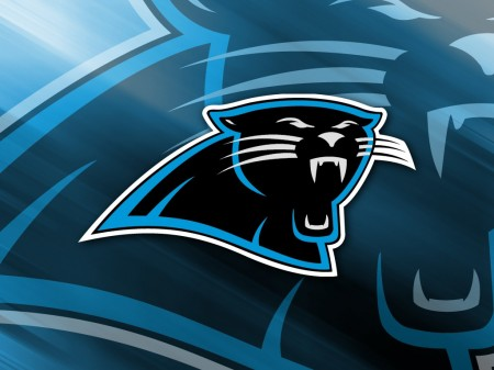 The Carolina Panthers will score an upset over the San Francisco 49ers on Sunday.