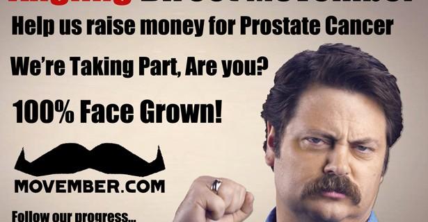 Movember Ron Swanson