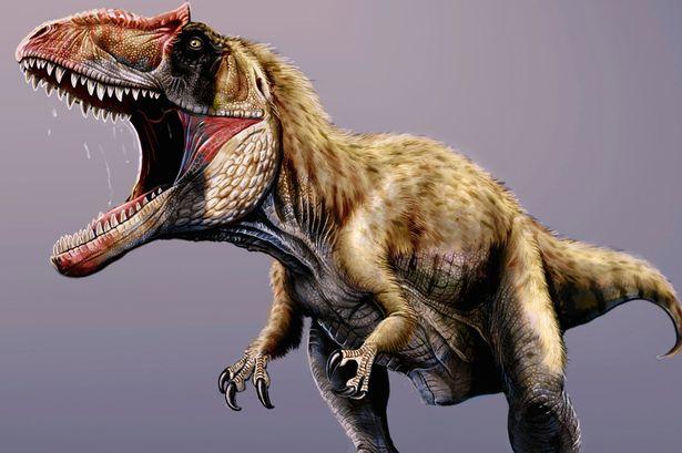 Siats Meekerorum Rivals to T. Rex