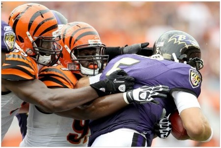 The Bengals are the pick over the Ravens in week ten of the NFL.