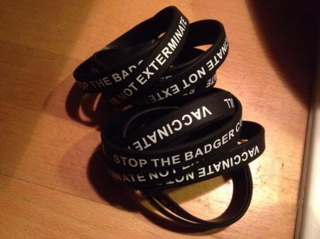 badger cull wristbands