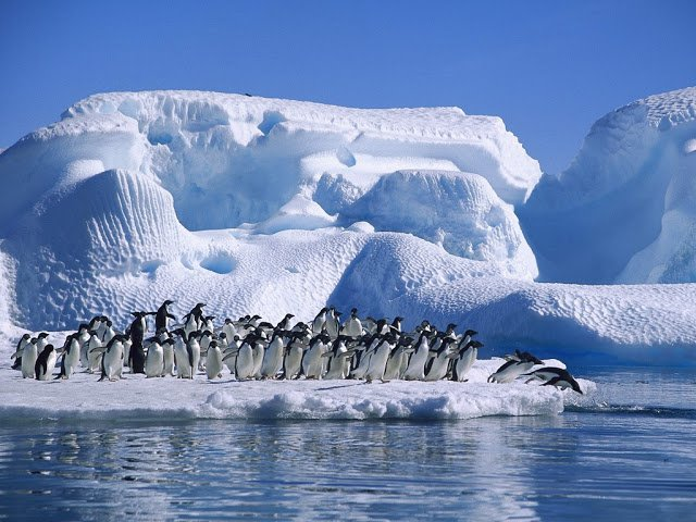science, Antarctica, global warming, modern warming, opinion