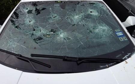 Adora Bull vehicle allegedly damaged