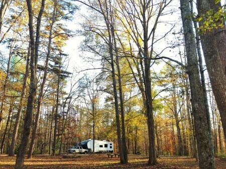 The Boyinks in South Carolina (state park)