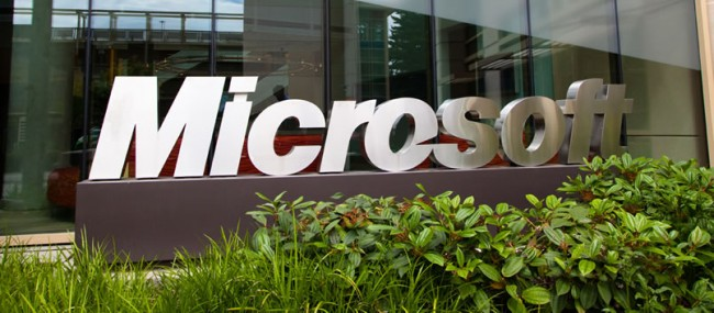 Microsoft fights cyber crime