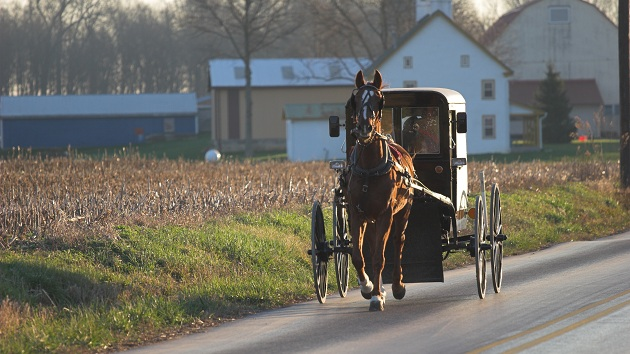 Ohio Amish Girl Will Not Have to Take Chemotherapy