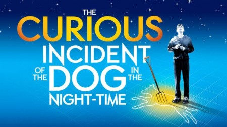 Poster for Curious Incident of the Dog in thee Night Time