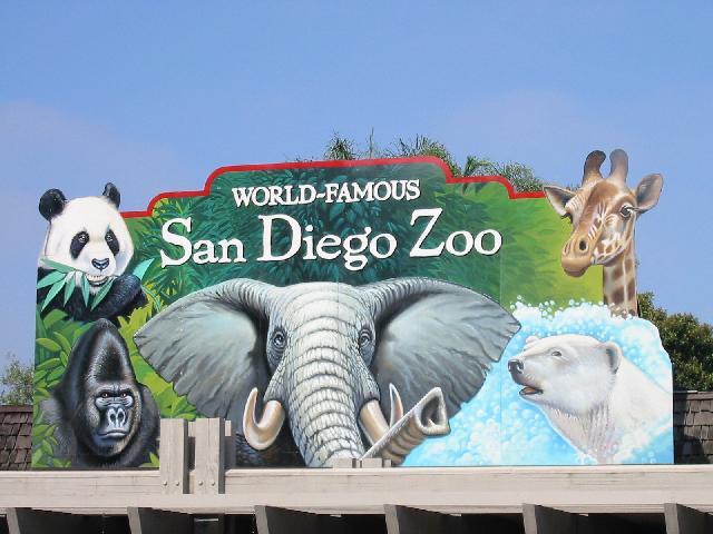 San Diego Zoo Same Age a Betty White