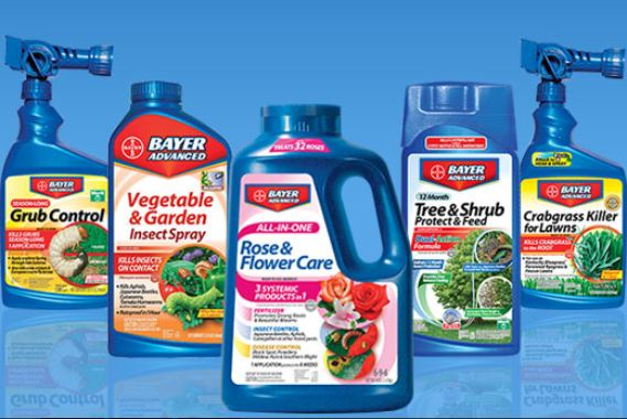 Bayer Advanced Products and Insecticide