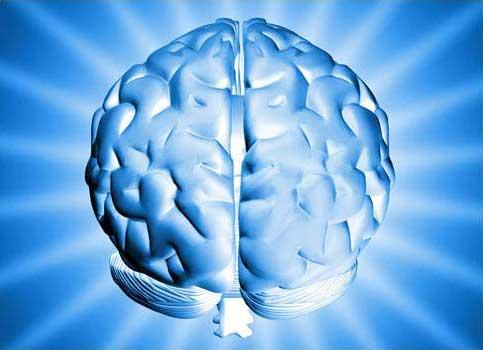 Alzheimer's Disease Linked to Head Trauma