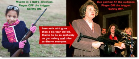 Gun Control for Dummies – and Democrats