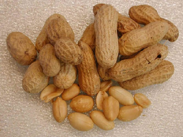 Peanut Allergy Treatment Shows Sign of Hope, Helped Kids Overcome Allergy