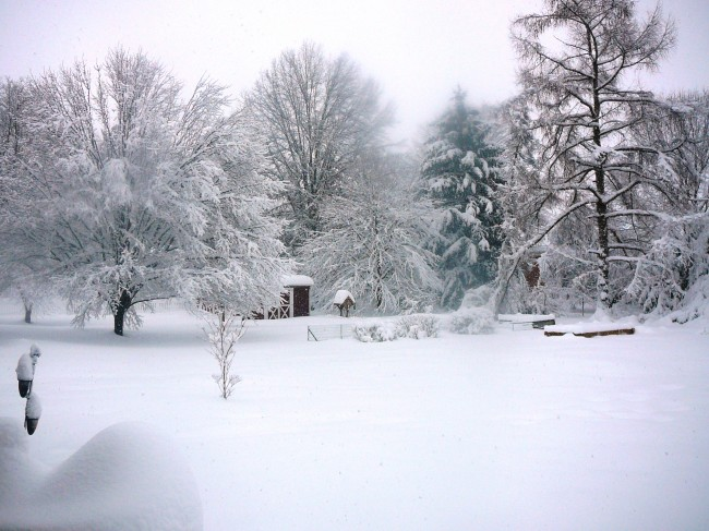 Record Snow Cold in U.S. Is Global Warming a Farce?