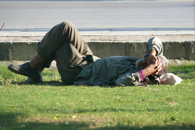 homeless problem stop the insanity essay