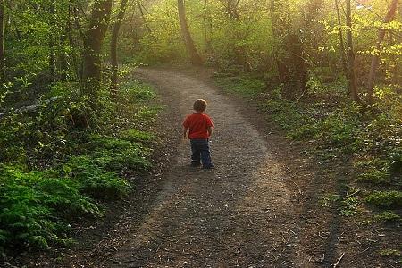Autistic Children Don't Value Boundaries [Video]