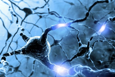 Brain Death Equals no Electrical Activity