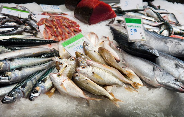 Omega 3 Fatty Acids in Fish Safeguard From Alzheimer's Disease