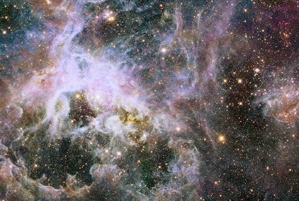 NASA Hubble Space Telescope Captures Birth of Stars in Tarantula Nebula