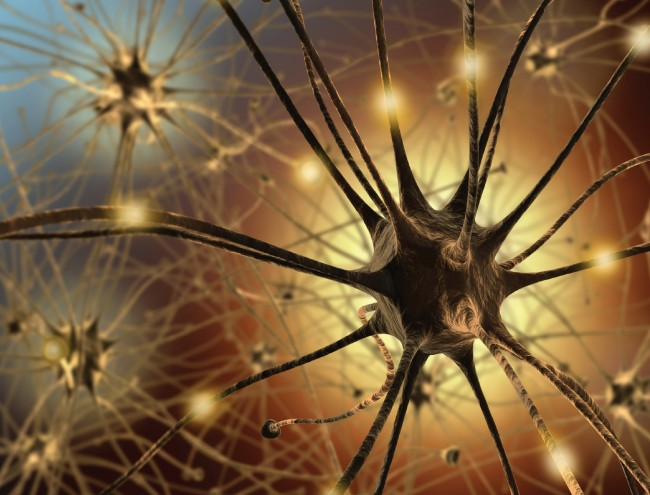 Depression Drug Might Help Anxiety in Alzheimer's Patients