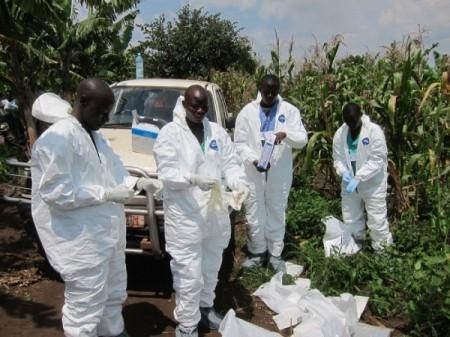 Global Health Security