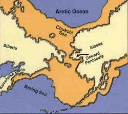 Beringia expanse